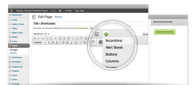 Premium WordPress Themes - TrueThemes