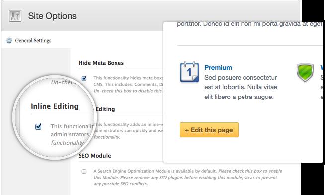 Wordpress Theme Programmer Graphic Designer